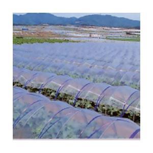 ビニールハウス用農ビ 透明  長さ100m×厚さ0.05mm×幅200cm|nns