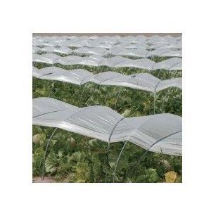 トンネル栽培用 農ビ トンネル防滴梨地 (原反) 厚さ0.075mmX幅135cm長さ100m|nns