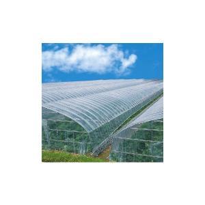 ビニールハウス用農ビ アキレス晴天 長さ100m×厚さ0.1mm×幅200cm|nns