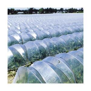 トンネル栽培用農ビ トンネルサンホット  長さ100m×厚さ0.075mm×幅210cm|nns