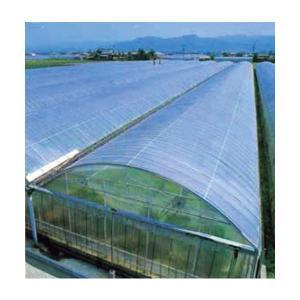ビニールハウス用農ビ エースみらい  長さ100m×厚さ0.05mm×幅135cm|nns