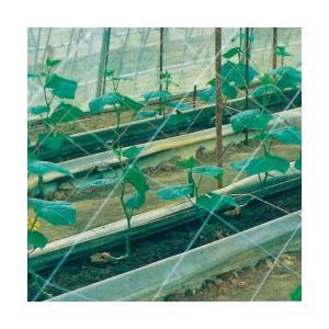 キュウリネット  白緑  18cm目×幅420cm×長さ36m|nns