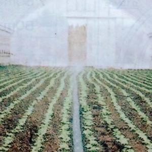 灌水 散水 潅水用 スミサンスイR−育苗  100m|nns