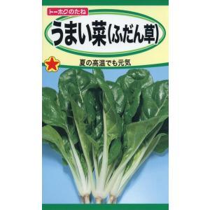 うまい菜 (ふだん草) 種子 たね 品番1161|nns