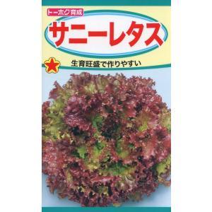 サニーレタス 種子 たね 品番3479|nns