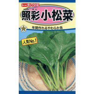 F1 照彩 小松菜 種子 たね 品番4881