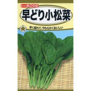 F1 早どり小松菜 種子 たね 品番5352