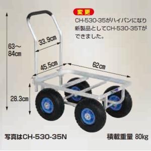 愛菜号 大きいコンテナ1個用 CH-530-35T|nns