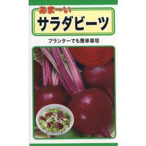 あま〜い サラダビーツ 種子 たね 品番1110|nns