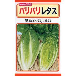 パリパリレタス 種子 たね 品番3491