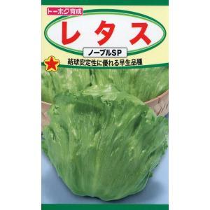 レタス ノーブルSP 種子 たね 品番3514