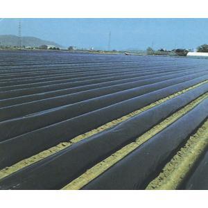 農業用マルチシート 国産黒マルチ 厚さ0.03mmX幅135cmX長さ200m 2本セット |nns