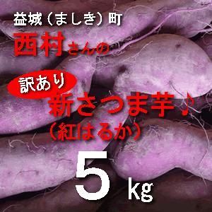 訳あり 新さつま芋 熊本県産 5kg サイズ不選別 送料別/西村さんの紅はるか この時期はホクホクした感じですネ
