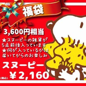 FUKU-SP-2160/中身はおまかせ!ピーナッツキャラクター雑貨福袋「スヌーピー」(上代¥3700相当中身は、5点前後)