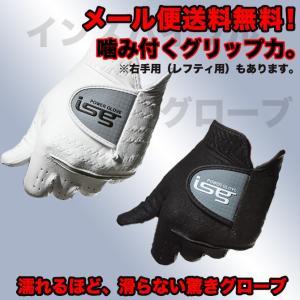 ゴルフ グローブ 両手セット メール便送料無料 右/左手用 両手 インスパイラルグローブ イオンスポーツ|noblegolf