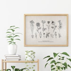 ポスター インテリア A3サイズサイズ 世界にひとつだけの花 イラスト モノクロ おしゃれ 模様替え 雑貨 おしゃれな北欧風 インテリアアートポスター|nobori-king|03