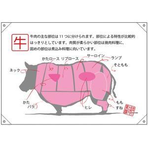 ドロップ幕(ポンジ) 牛 部位イラスト No.68746 (受注生産) noboristore