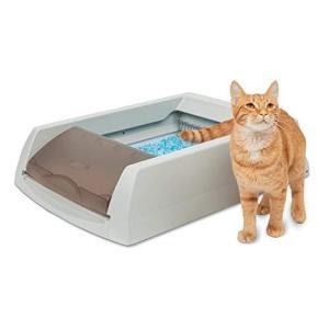 PetSafe スクープフリー オリジナル 猫 トイレ ネコ 自動 トイレ 自動清潔 旅行 猫のトイレ手間なし 猫用トイレ本体 臭わない 砂をすくわな|nobuaki-shop