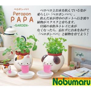 ◎ペロポンパパ/お皿のお水を飲んで育てる栽培セット◎  水飲みトレイにお水をあげて「ペロポン」と植物...