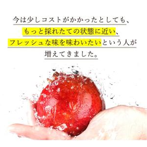 有機ざくろジュース100%(ストレート) 710ml 3本セット 野田ハニー オーガニック ざくろ ジュース フルーツジュース 令和 nodahoney 09