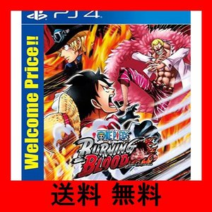 【PS4】ONE PIECE BURNING BLOOD Welcome Price!!|noel-honpo