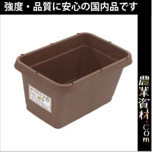 AZベジプランター500 NEO (ブラウン) 515(横)×335(縦)×258(高さ) 花 野菜ガーデニング 家庭菜園 菜園プランター|nogyo-shizai