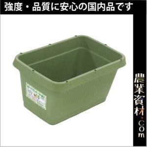 AZベジプランター500 NEO (グリーン) 515(横)×335(縦)×258(高さ) 花 野菜ガーデニング 家庭菜園 菜園プランター|nogyo-shizai