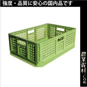 折りたたみコンテナ(薄緑) 550(横)*370(縦)*200(高さ)コンテナ 折りたたみ,収穫コンテナ|nogyo-shizai