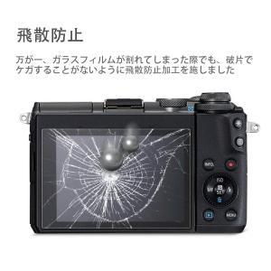 Panasonic LUMIX GX7MarkIII / GX7MarkII / GF10 ガラスフ...
