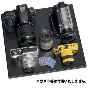 トーリ・ハン 防湿庫 ドライ・キャビ エコノミーシリーズ 47L EC-47-M2