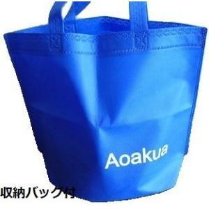 Aoakua ディスク マーカーコーン 24枚 収納バッグ セット(4色-各6枚)