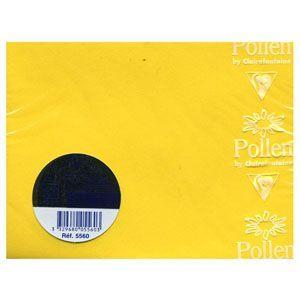 封筒 クレールフォンティーヌ POLLEN ポレン ミニカード用封筒 5セット イエロー cf5560|nomado1230