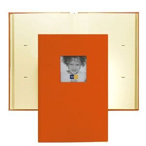 コロ(KOLO) ハドソン 3UP マンゴー アルバム 2セット No. 1008605|nomado1230
