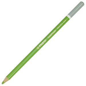 パステル色鉛筆 水彩 スタビロ カーブオテロ 水彩パステル色鉛筆 4.4ミリ 単色 12本セット リーフグリーンミドル 1400-570|nomado1230