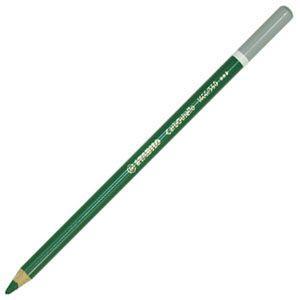 スタビロ カーブオテロ 水彩パステル色鉛筆 4.4ミリ 単色 12本セット ビリジャンマット 1400-590|nomado1230