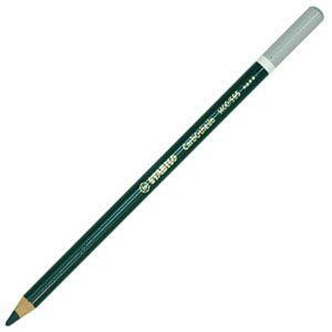 パステル色鉛筆 水彩 スタビロ カーブオテロ 水彩パステル色鉛筆 4.4ミリ 単色 12本セット リーフグリーンディープ 1400-595|nomado1230