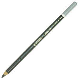 パステル色鉛筆 水彩 スタビロ カーブオテロ 水彩パステル色鉛筆 4.4ミリ 単色 12本セット ウォームグレー5 1400-708 nomado1230