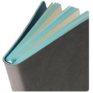 ノート A6 デイクラフト(DAYCRAFT) Signature A6サイズ ノートブック 2セット ライトグリーン R4016|nomado1230|05