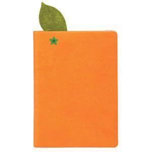 ノート デイクラフト(DAYCRAFT) Juicy ノートブック 2セット オレンジ R4018|nomado1230