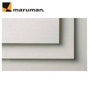 水彩紙 マルマン ヴィフアール水彩紙 4/6判T 100枚セット 1321042V|nomado1230