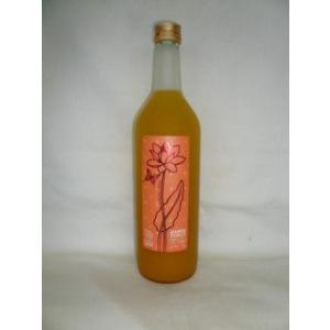 フルフル 完熟マンゴー梅酒 720ml 9度 [山口合名 福...