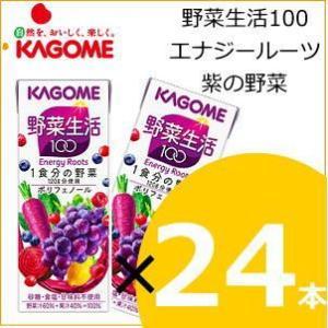 カゴメ 野菜ジュース 野菜生活100 エナジールーツ(紫の野菜) 200ml×24本|nomimon