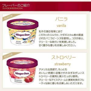 お中元 ギフト アイスクリーム ハーゲンダッツ アイスクリーム ギフト セット10個 アイス nomimon 02