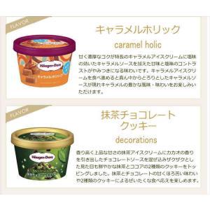 お中元 ギフト アイスクリーム ハーゲンダッツ アイスクリーム ギフト セット10個 アイス nomimon 06