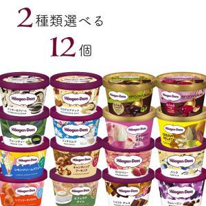 ハーゲンダッツ アイスクリーム ミニカップ 14種類から2種類選べる12個(6個×2種類)セット