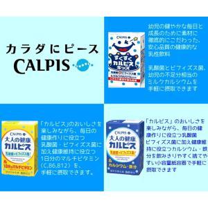 「カルピス」シリーズ 6種類から4種類選べる96本|nomimon|02