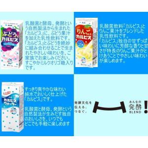 「カルピス」シリーズ 6種類から4種類選べる96本|nomimon|03