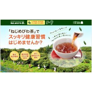 ねじめ びわ茶24 2gティーバッグ 24包入 十津川農場|nomimon|02