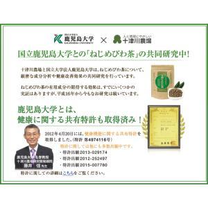 ねじめ びわ茶24 2gティーバッグ 24包入 十津川農場|nomimon|11
