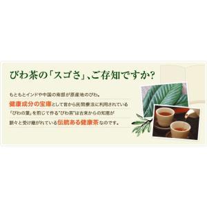 ねじめ びわ茶24 2gティーバッグ 24包入 十津川農場|nomimon|03